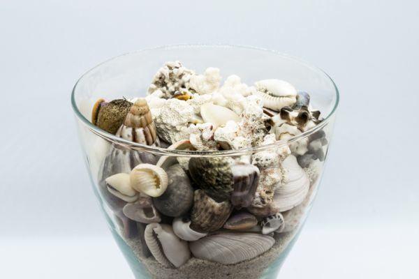 decoracion-con-jarrones-de-cristal-con-conchas-istock