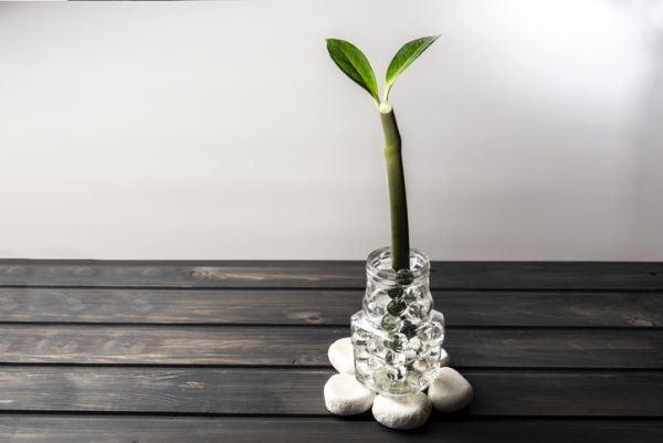 decoracion-con-jarrones-de-cristal-recibidor-istock