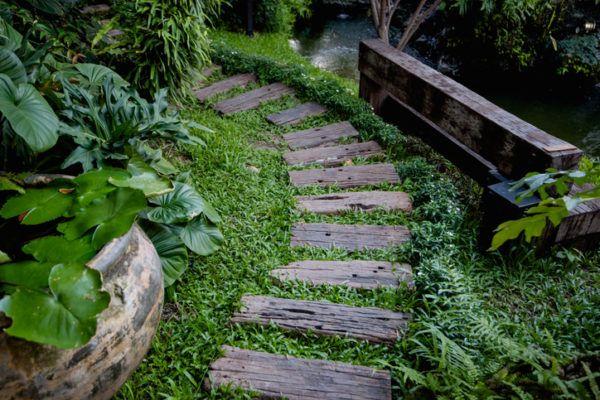 Escalera rustica madera naturaleza