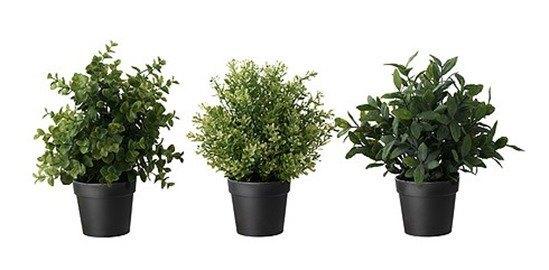 Plantas artificiales de ikea fotos y precios - Ikea plantas artificiales ...