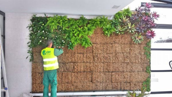 C mo hacer jardines verticales paso a paso materiales for Jardin vertical exterior