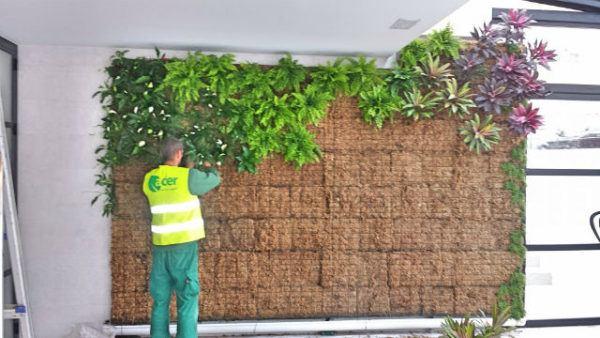 C mo hacer jardines verticales paso a paso materiales for Plantas usadas para jardines verticales