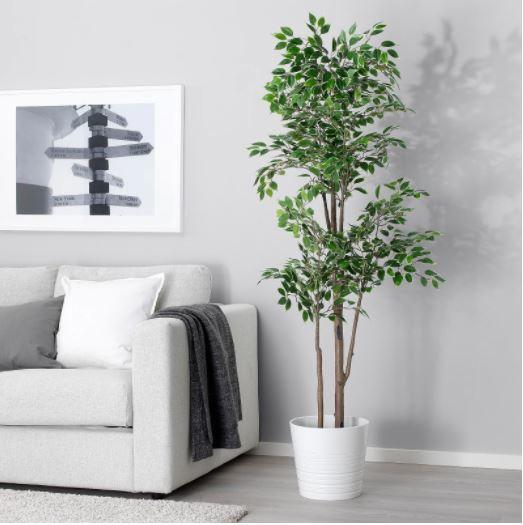 31++ Planta artificial salon inspirations